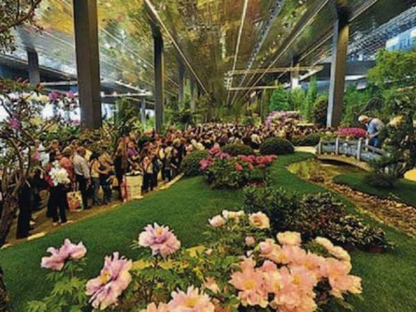 Euroflora 2017, così Genova cambierà l'expo dei fiori