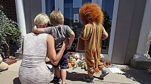 Assedio al killer del leone Cecil non può più andare a lavoro