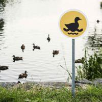 Lituania, cartelli stradali in miniatura per piccoli animali