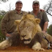 Zimbabwe chiede l'estradizione del killer del leone Cecil