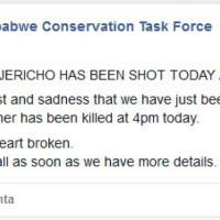 Zimbabwe: ricercatore smentisce la morte di Jericho, fratello di Cecil
