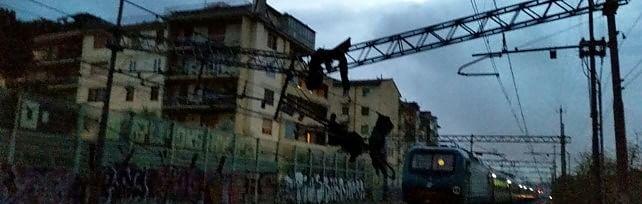 Nubifragio si abbatte sulla Toscana   foto -     video      Riattivata circolazione   sulla Roma-Firenze    foto