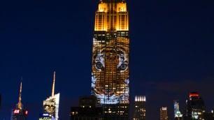 L'Empire come l'arca di Noè animali a rischio sul grattacielo