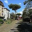 Nubifragio Firenze, danni  a scuole e impianti,   video   distrutto parco dell'Anconella