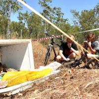 Australia, 70 teste di coccodrillo scoperte in frigorifero