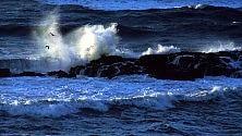 Abbassamento CO2 non salverà gli oceani