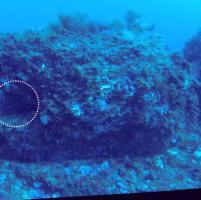 Trovato un monolite di 9000 anni, opera degli abitanti di 'Pantelleria Vecchia'
