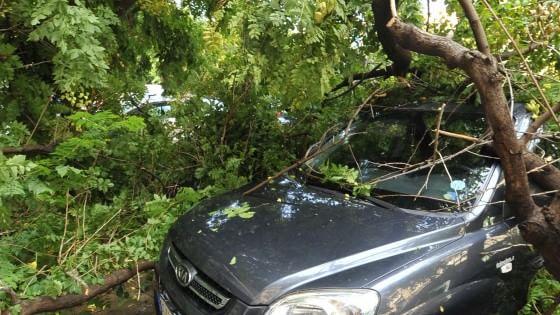 Maltempo, allerta temporali si sposta a Sud-est. Trombe d'aria, allagamenti e alberi abbattuti
