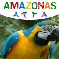 In Veneto, una foresta per i pappagalli a rischio