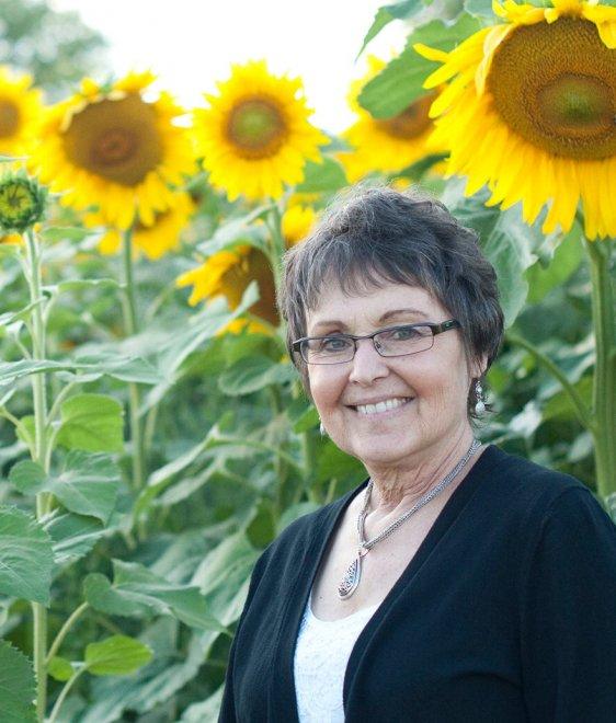 Usa pianta 4500 girasoli in ricordo della moglie morta di for Piantare girasoli