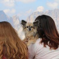 In vacanza con gli animali: le foto dei lettori / 20