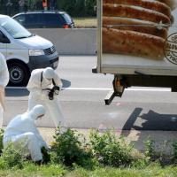 Migranti, decine trovati morti in un tir in Austria: 'Asfissiati in un cassone'