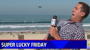 Il reporter e l'insetto volante panico e risate in diretta tv