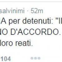 """Salvini: """"Il Papa vuole l'amnistia? Il mio pensiero va alle vittime"""". Pannella ringrazia Francesco"""