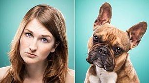 Il cane in posa con il padrone la somiglianza è davvero curiosa