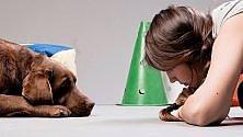 Educare gli animali, Teo Mariscal racconta il suo metodo gentile