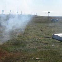 Russia, orsi polari bloccano scienziati nella stazione meteorologica