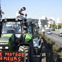 Francia: 1.500 trattori bloccano Parigi, sfilano agricoltori