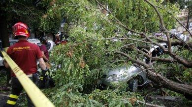 Nubifragio a Roma, albero su un'auto: ferita donna. Ritardi a Fiumicino   foto