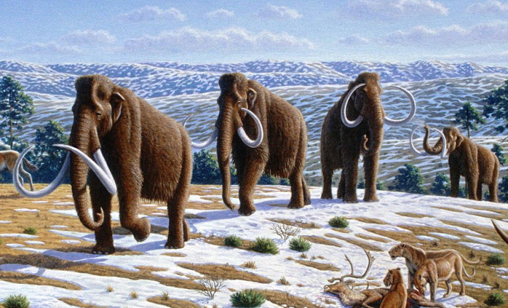 La megafauna scomparsa in Europa