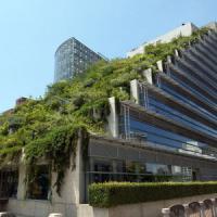 Giardini pensili, se la salvezza delle metropoli cresce sui tetti