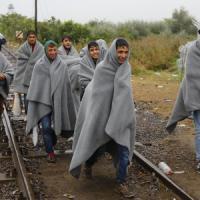 Immigrati: sono l'11% della forza lavoro (più che in Germania) ma pagano