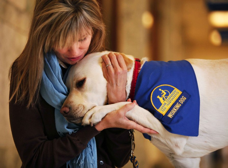 Usa, testimoni stressati in tribunale: ci pensano i cani