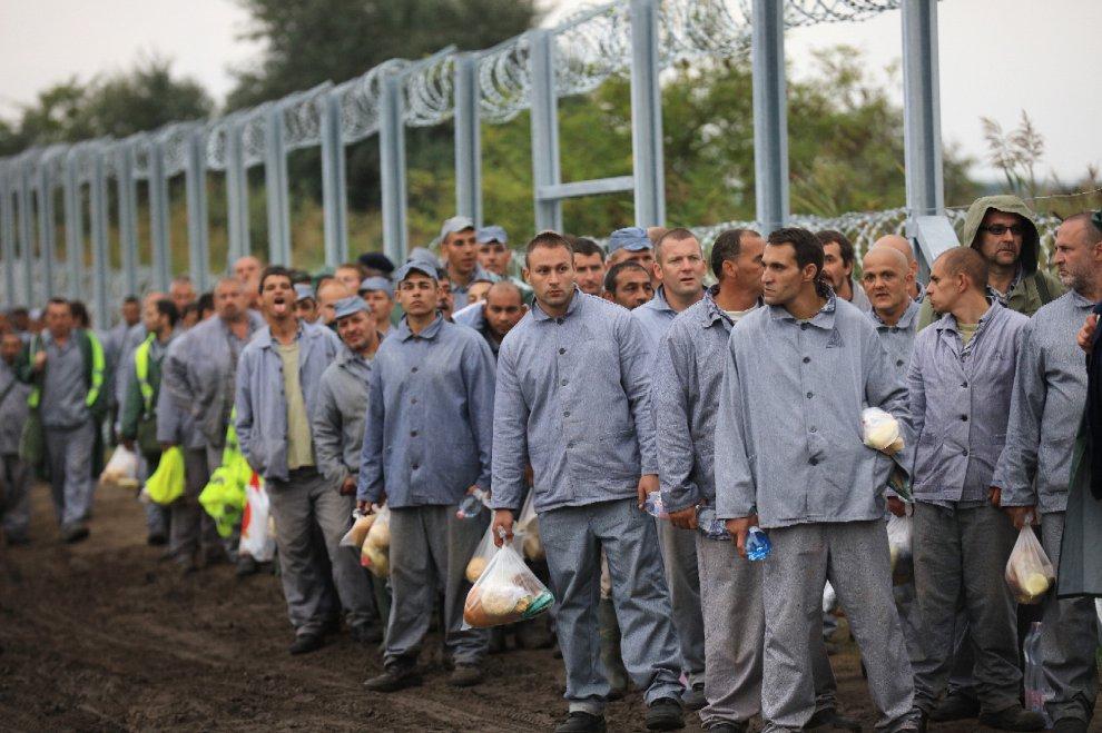Ungheria, il muro anti-migranti lo costruiscono i detenuti