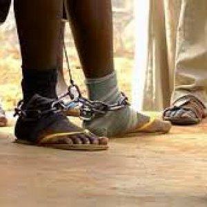 Camerun, Sant'Egidio libera 9 giovani: incarcerati per anni per un ramo spezzato