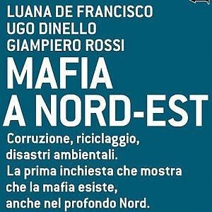 Benvenuta al Nord! Dai rifiuti al turismo, gli affari della mafia in Veneto