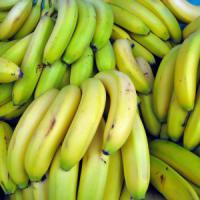 """Coldiretti: """"Così in Sicilia si coltivano le banane"""""""