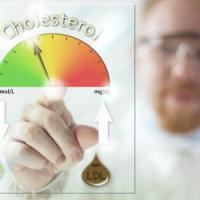 Dieta, sport e farmaci di nuova generazione. La battaglia contro il colesterolo