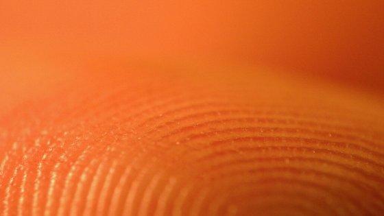 Usa, rubati 5,6 milioni di impronte digitali: attacco hacker all'Opm