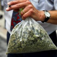 Il social network della cannabis: così l'erba si compra online