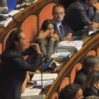 """Senato, bagarre in aula su gesto osceno di Barani. Grasso: """"D'ora in poi rigore assoluto"""""""
