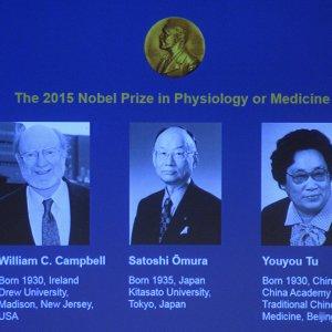 Nobel per la Medicina a tre scienziati per studi sui parassiti e la malaria