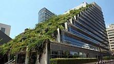 Giardini pensili, sui tetti la salvezza delle città