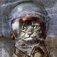 """""""Il gatto e l'uomo"""" legame magico e antico"""