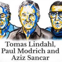 Nobel per la Chimica a Tomas Lindahl, Paul Modrich e Aziz Sancar