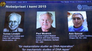 Nobel Chimica a Lindahl, Modrich, Sancar