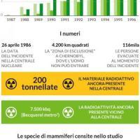 Torna la vita a Chernobyl: animali selvatici ripopolano la zona