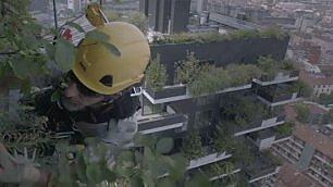 Acrobazie, balconi e pollice verde Un film sui giardinieri volanti    Foto