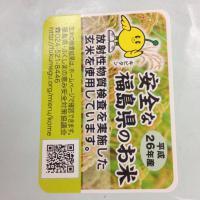 Fukushima, tornano l'agricoltura e i mestieri, nonostante la crisi e lo scetticismo