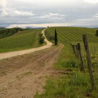 Le colline del Chianti in autunno