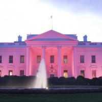 Casa Bianca diventa rosa per la prevenzione del cancro al seno