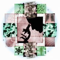 Una cellula ci salverà: i passi avanti della ricerca sulle staminali
