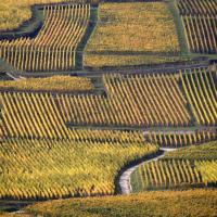 Francia. Lo show dell'autunno in Alsazia