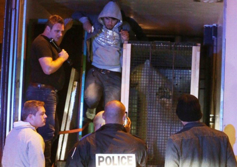 Calais, il dramma di tre migranti: fuga sul camion con l'orso polare
