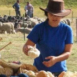 La lana a km zero di Valeria, allevatrice che ha fatto rinascere l'impresa di famiglia