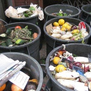 Spreco alimentare, in Italia finiscono nella spazzatura 13 miliardi di euro